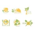 Set of Organic and Natural Food Labels vector image
