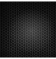 black hexagon grill vector image