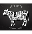 Butcher guide beef cuts vector image