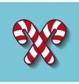merry christmas sweet canes vector image