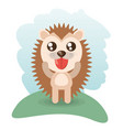 cute hedgehog animal wildlife vector image