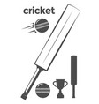 set of cricket design elements vector image