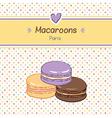 macarons three vector image
