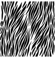 Black and white zebra background vector image