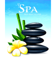 Spa vector image