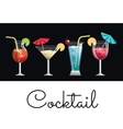 collection cocktail glass umbrella and lemon vector image
