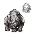 rhino animal isolated sketch of african rhinoceros vector image vector image