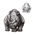 rhino animal isolated sketch of african rhinoceros vector image