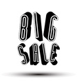 Big Sale advertising phrase made with 3d retro vector image