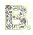 ink hand drawn fruits and veggies vitamin b5 vector image