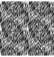Black and white zebra background vector image