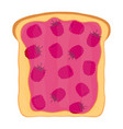 raspberry jam on toast with jelly flat style vector image