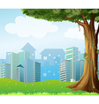 A giant tree with vine plants across the high vector image vector image
