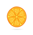 orange fruit slice vector image