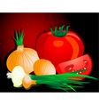 onion and tomato vector image