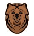 bear head mascot for a sports team logo vector image