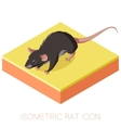 Isometric rat icon on a square ground vector image