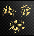 set of gold splash on black background vector image
