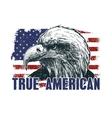 American eagle against USA flag vector image