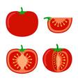tomatoes flat style on white background tomato vector image