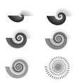 Shell swirl vector image vector image