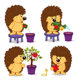 hedgehog grow tree with apple vector image