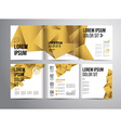 flyer template design vector image