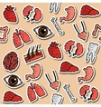 Colored Human organs pattern vector image