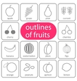 flat fruits outlined coloured vector image