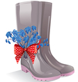 Rubber boots with bouquet primrose vector image