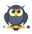 owl with pencil vector image