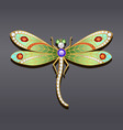 a dragonfly brooch made of gold with precious vector image