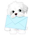 Cute Dog Delivering Mail Envelope vector image