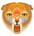 Samilodon sabre tooth cat vector image