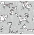 Grey cats vector image