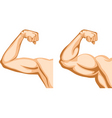 Hand before and after fitness vector image