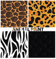 animal print vector image