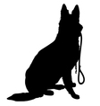 Shepherd with Leash vector image