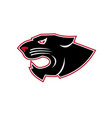 aggressive panther head icon vector image