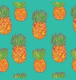seamless hand drawn pattern with pineapple vector image
