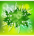 Card with field of lily-of-the-valley flowers vector image