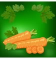 Carrots Healthy lifestile vector image vector image