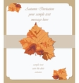Autumn maple leaves card Invitation vector image