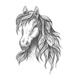 Young horse head sketch with wavy mane vector image vector image