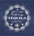 vintage tequila banner or poster design vector image