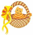 Cat in Basket vector image