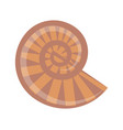 spiral striped shell isolated cartoon vector image