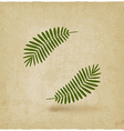 two green palm leaves on old background vector image