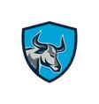 Texas Longhorn Bull Head Shield Retro vector image