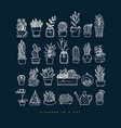 icon plants in pots dark blue vector image